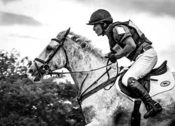 Highly Commended -Man On A Galloping Horse - Barbara Austin